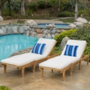 Paolo Outdoor Teak Brown Wood Chaise Lounge with Cushion (Set of 2)