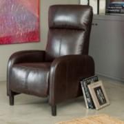 Trenton Brown Leather Recliner