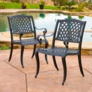 Marietta Outdoor Cast Aluminum Dining Chair (Set of 2)