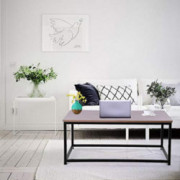 Ecurson End Table,Metal Baking Varnish Coffee Table Rectangular Home TV Table,Sofa Snack Desk Computer Table for Living Room