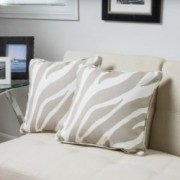 Dixon Beige Color Contemporary Two Pillows